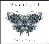 Partikel String Theory